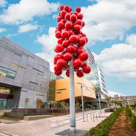OHSU, Education signs, art installment, portland signs, art installation