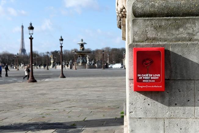 interesting advertising, portland architectural signs, portland signs, signs portland, digital printing portland